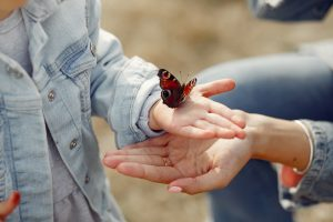 Two people with their hands out holding a butterfly.